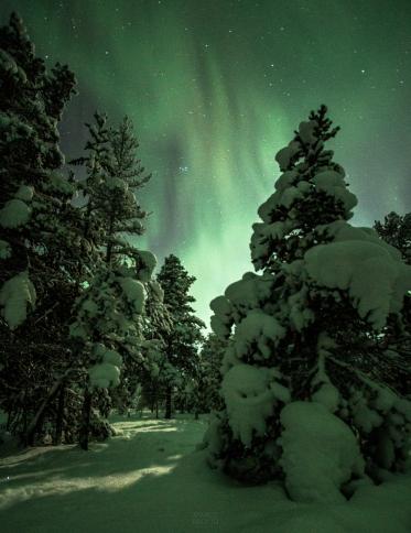 'Em um certo momento, um monstro verde veio do céu' (Foto: Divulgação)