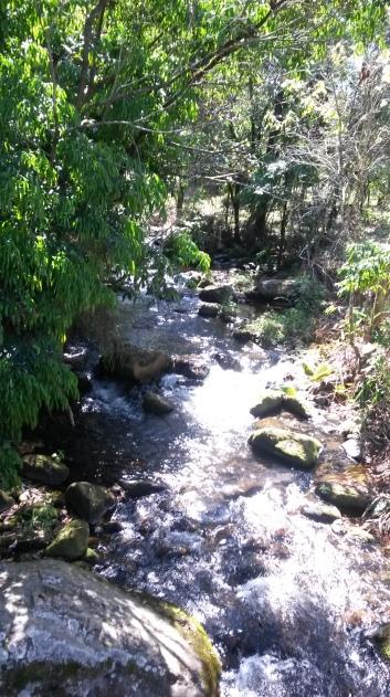 Fazenda fica em área de preservação ambiental